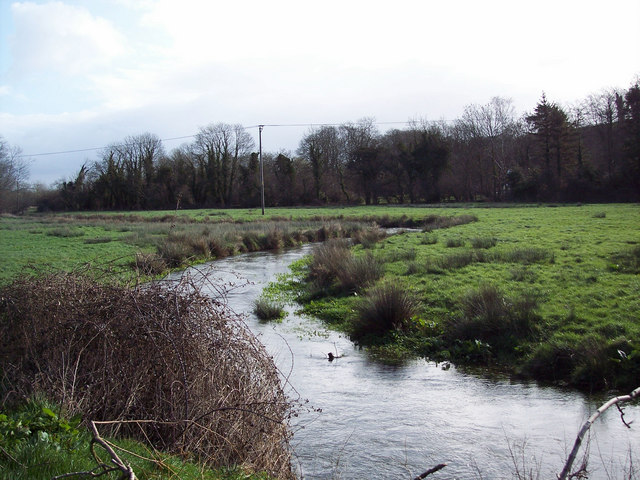 River Ebble, Broad Chalke