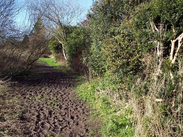 Muddy footpath in Broad Chalke