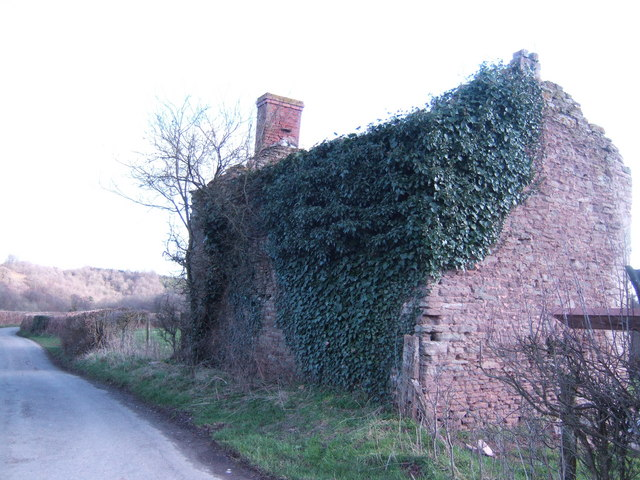Ivy-clad ruined cottage
