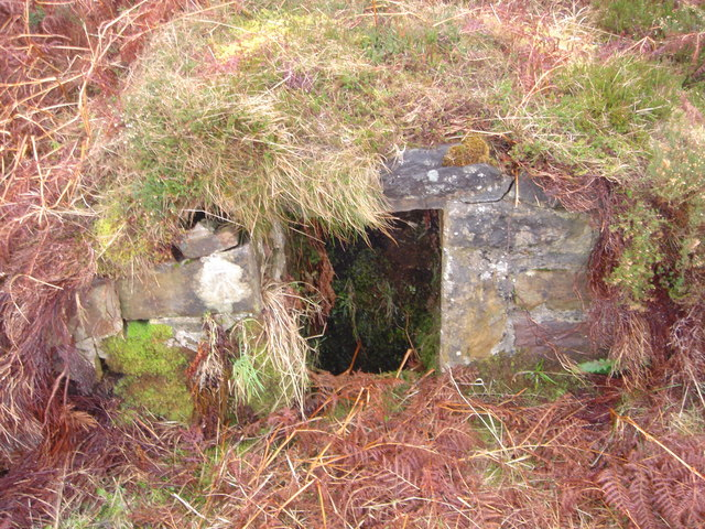 Well at the Long Loch, Dunnet Head