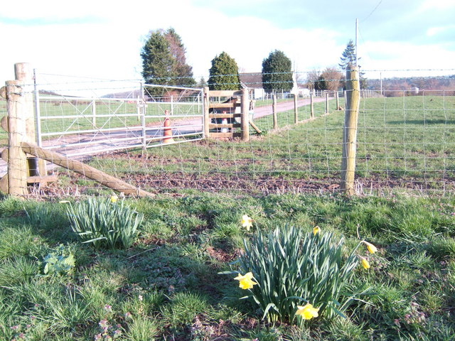 Early spring at Portfield Farm