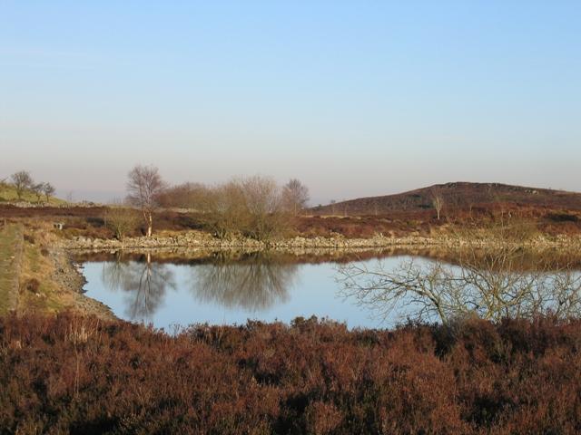 Northern End of Llyn Cyfynwy