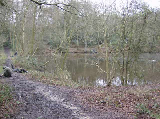 Medieval fish ponds, Lower Common
