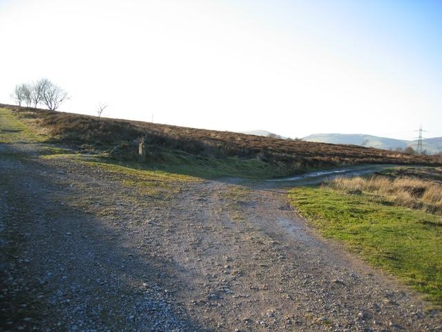 Track Junction by Llyn Cyfynwy