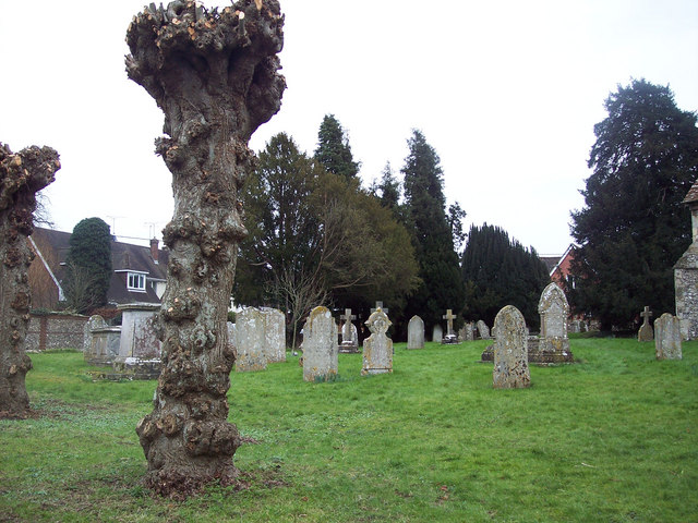 Churchyard, St Peter and St Paul, King's Somborne