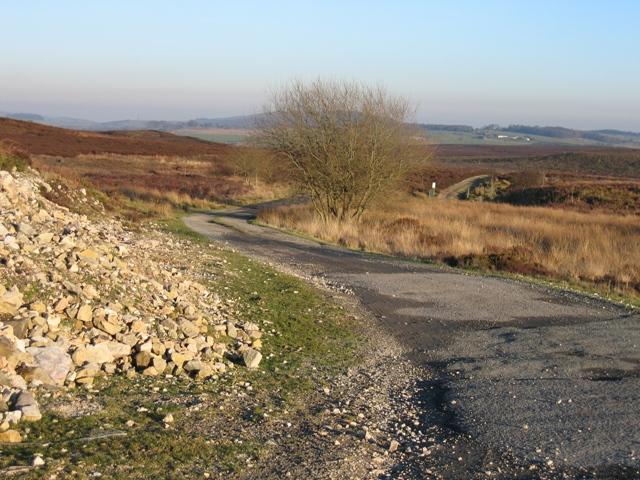 Track from Llyn Cyfynwy to the A5104