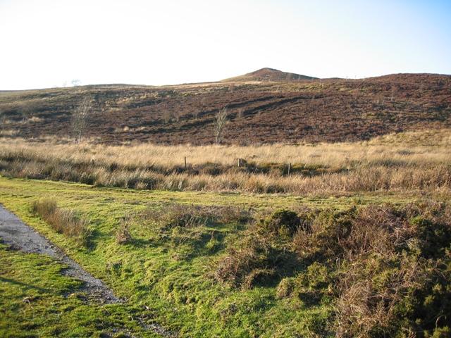 High Point near Llyn Cyfynwy