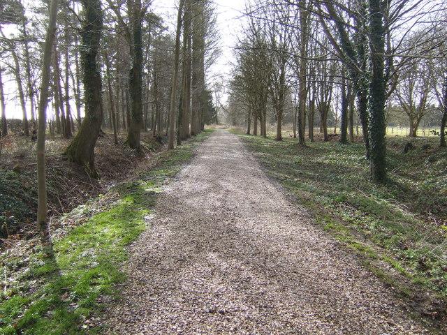 Driveway to Poulton Priory