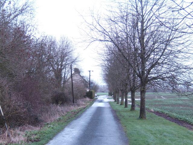 Road to Dudgrove Farm