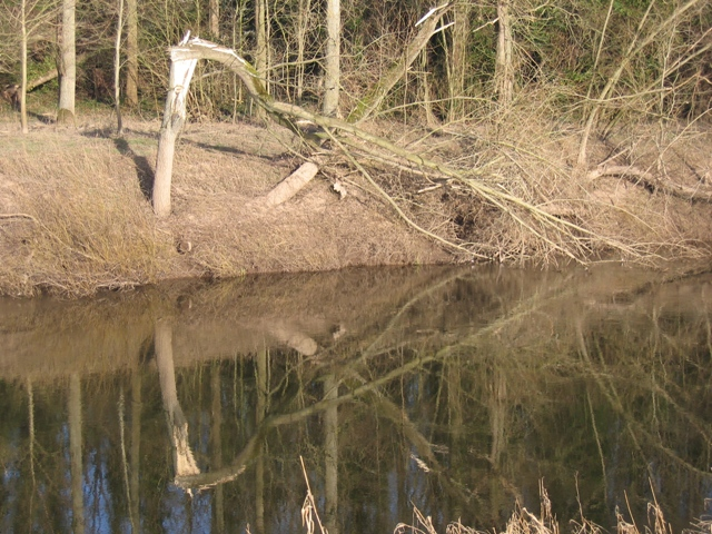 Reflections in the River Dee