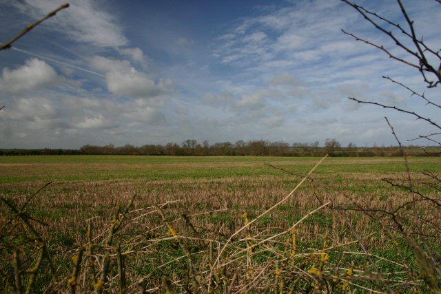 Open farmland north of Little Eversden