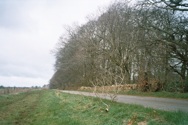 Road near Black Knap wood