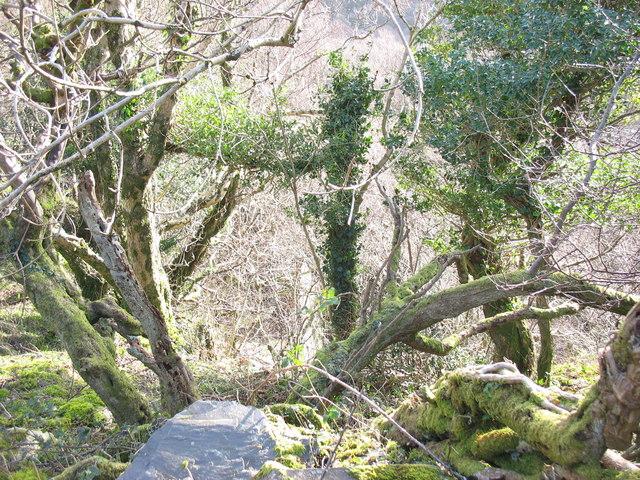 Western edge of the Chwarel y Faenol pit