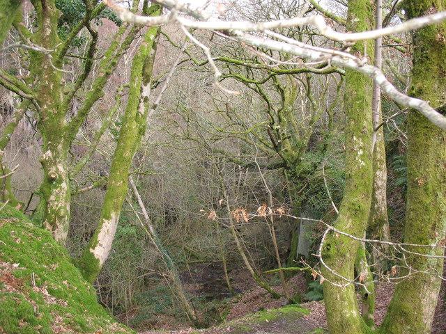Old entrance cutting into Chwarel y Faenol Quarry
