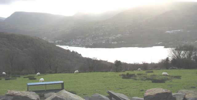 Sheep grazing above the Fachwen valley with Llyn Padarn in the distance