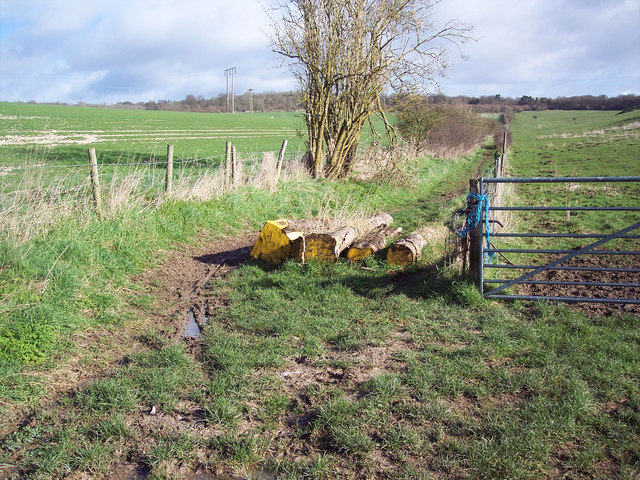 Bridleway with log barrier near Barford St Martin