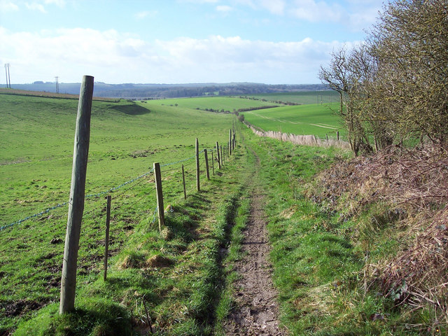 View towards Barford St Martin from nearing Grovely Woods
