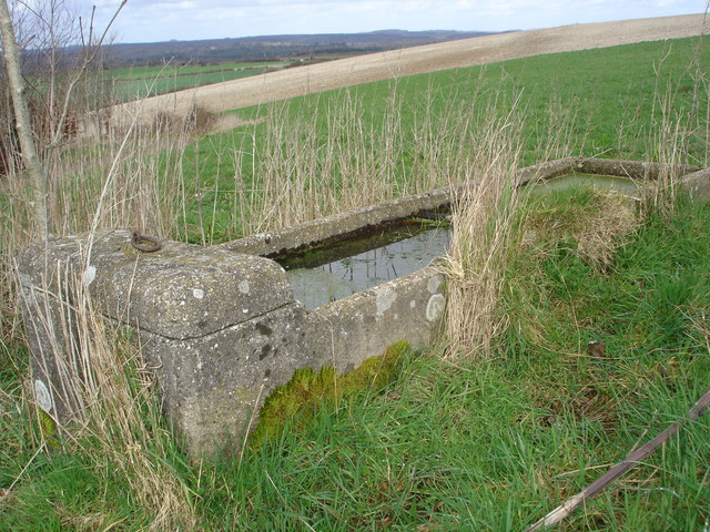 Water Trough - Witherington Down