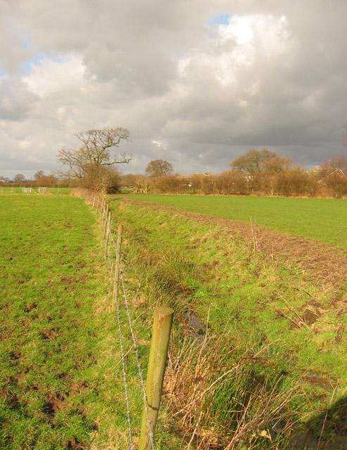 Brook near Wistaston