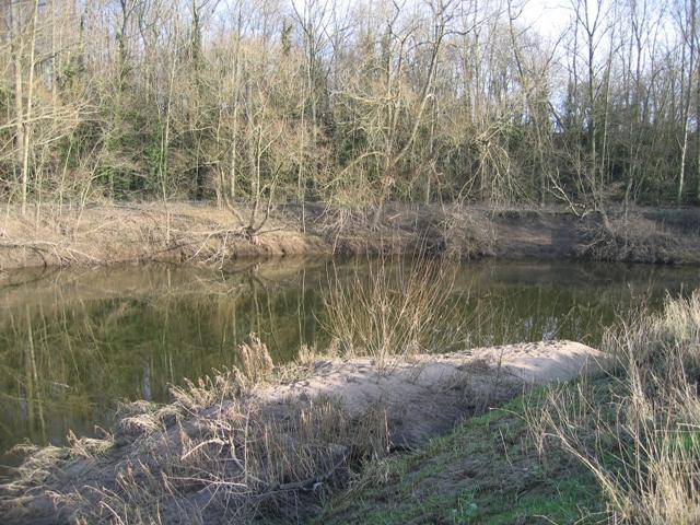 Sandbank on the River Dee