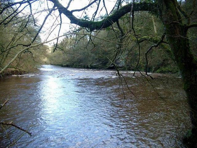 River Ayr below Failford