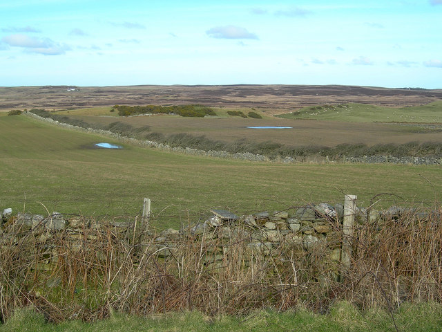 Fields at Sunderland Farm