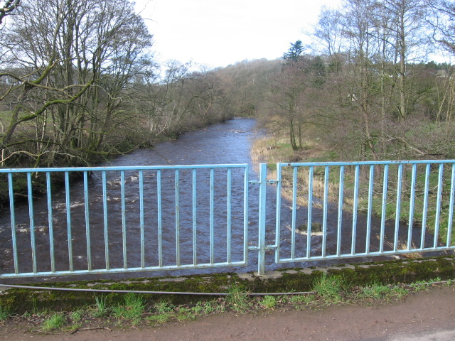 River Ayr at Haugh