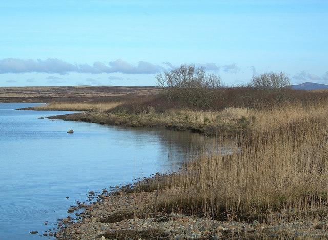 Loch Gorm Shoreline