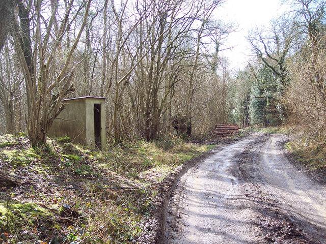 Hut by bridleway heading towards Barford St Martin