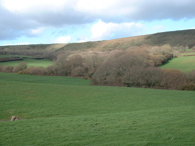 Grove Wood, lower end, Westwood Farm near Harmans Cross