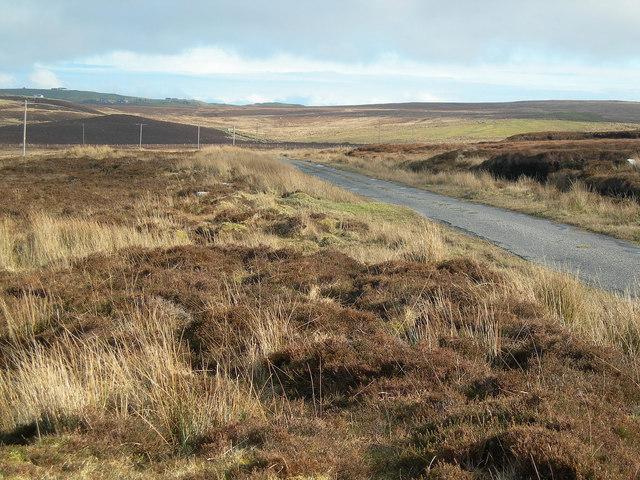 Across the Moor