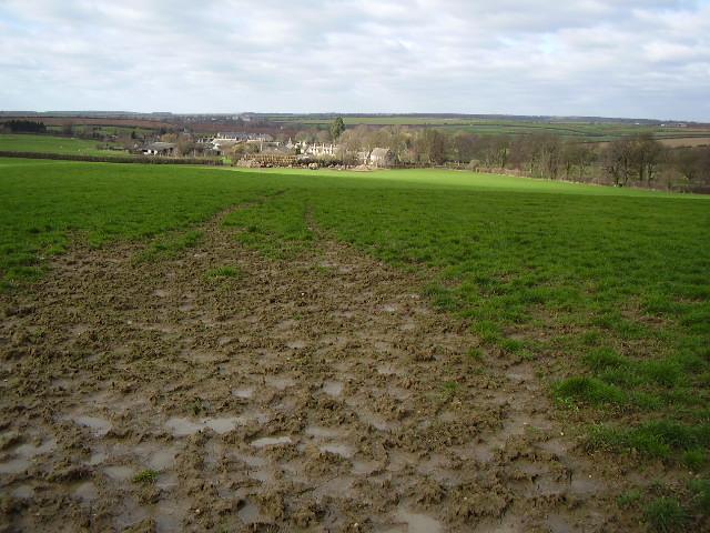 Muddy field to Little Casterton