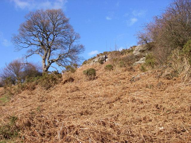 Buckland Hill near Bwlch