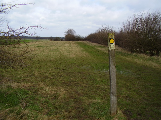Danelaw Way near Walk Farm