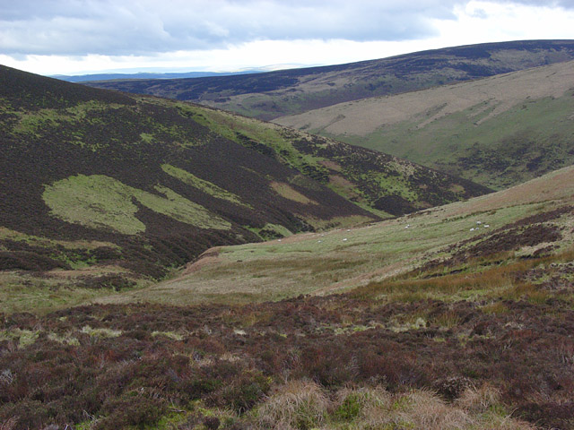 Valley below Crumpton Hill