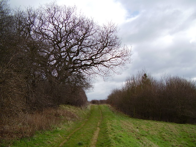 Footpath from Taylor's Farm