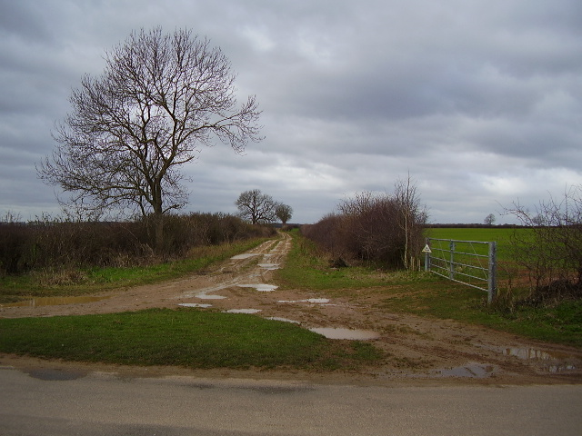 Bridleway from Mounts Lodge
