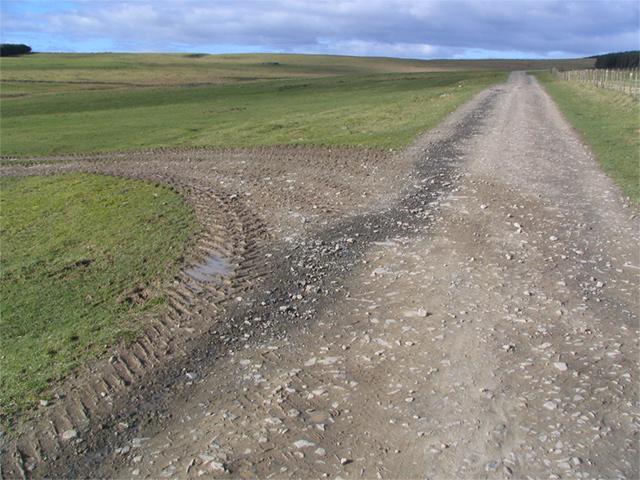 Tracks meet by a fence