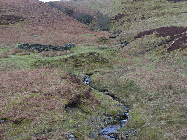 Sheepfold and a Dirn Burn tributary