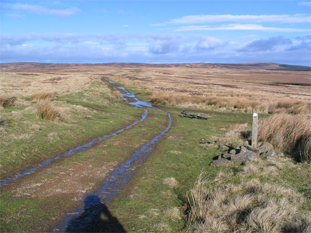 Meeting the Southern Upland Way