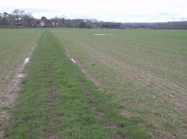 Footpath to Bucklebury