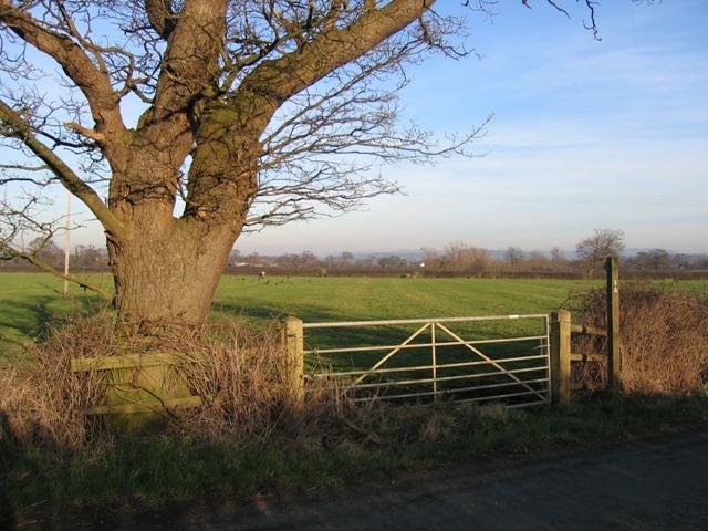 Footpath near Crewe by Farndon