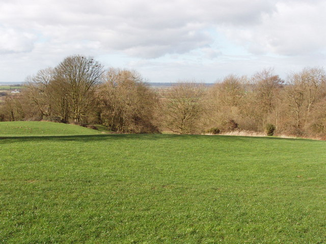 Pasture and Noke Wood