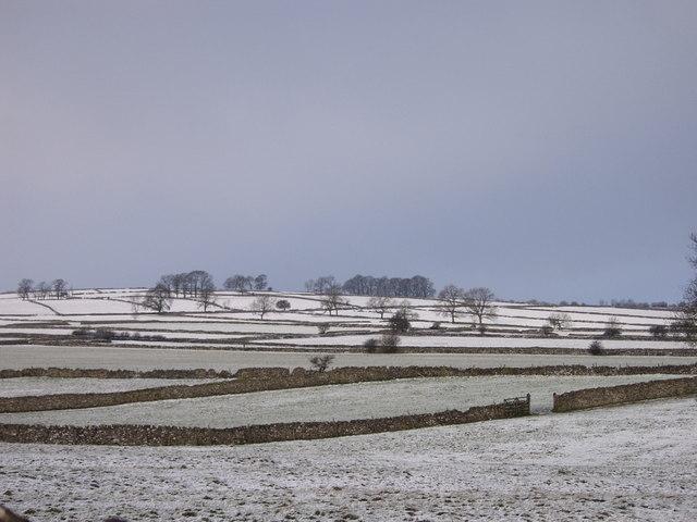 Traditional fields off Pennyunk Lane