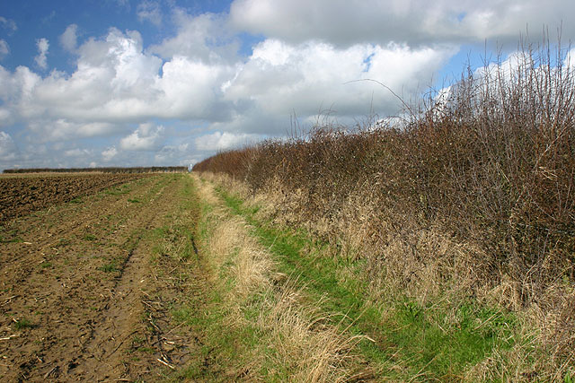 Footpath from Lew to Brize Norton