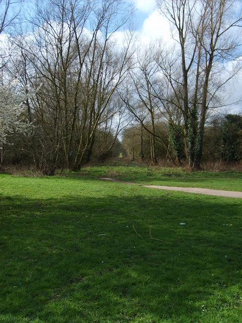 Path into Alder Coppice