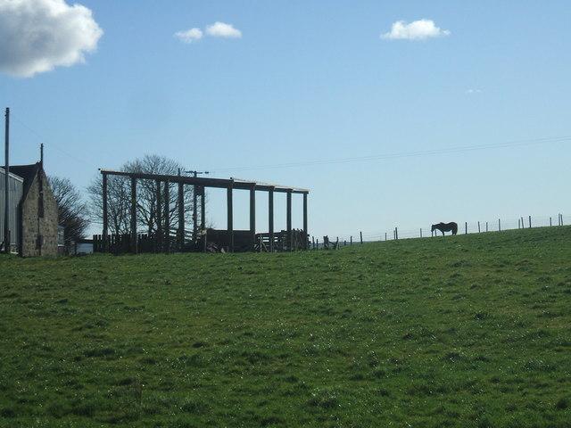 Fernieslack Farm