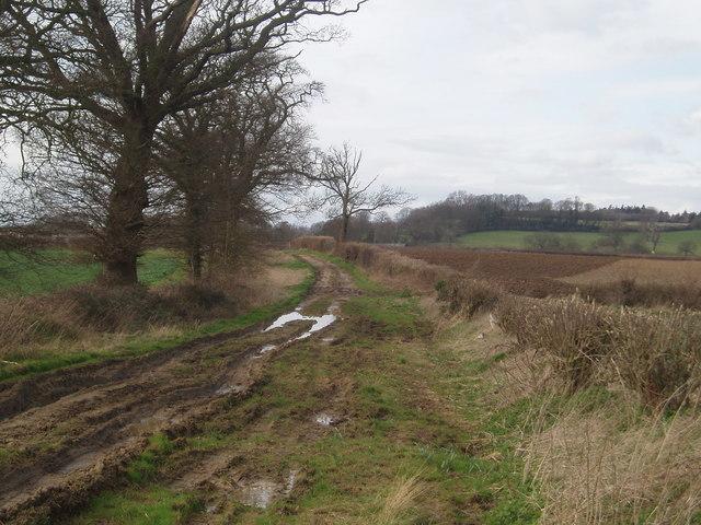 Barrowbush bridleway