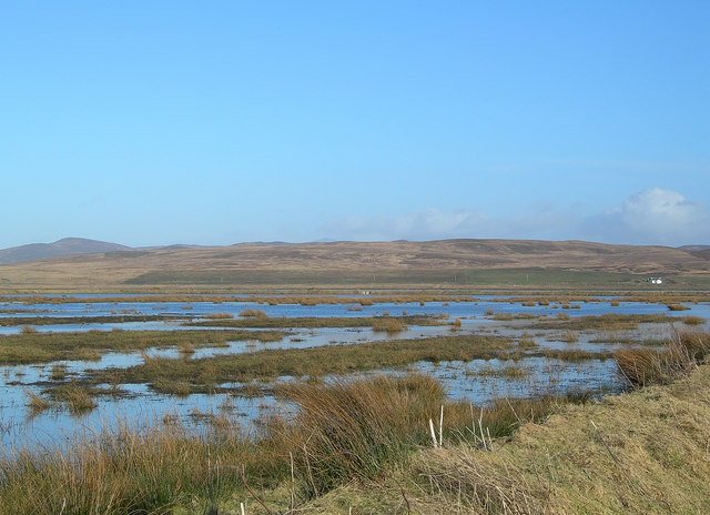 From the RSPB Hide