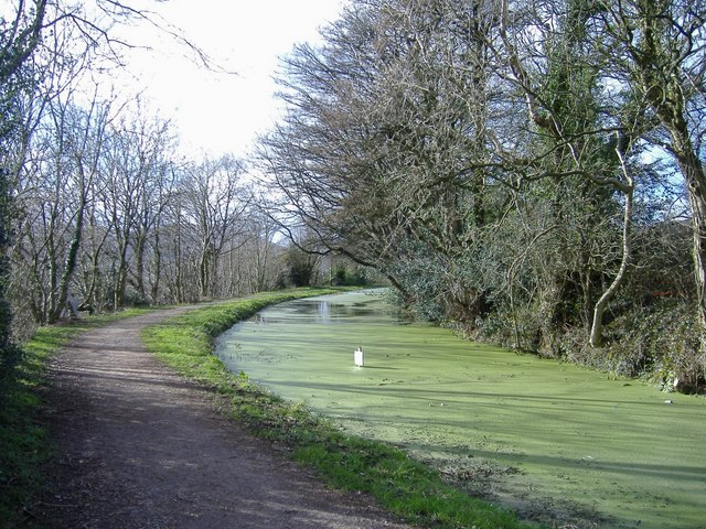 Monmouthshire and Brecon canal, Mount Pleasant